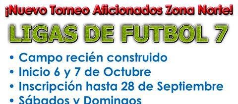 Nueva Liga Fútbol 7 Aficionados